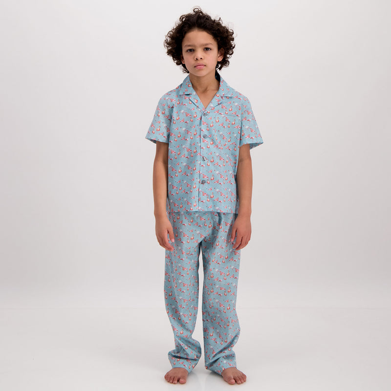 Boys Long Pyjamas Flamingo-Flamenco Blue - Woodstock Laundry