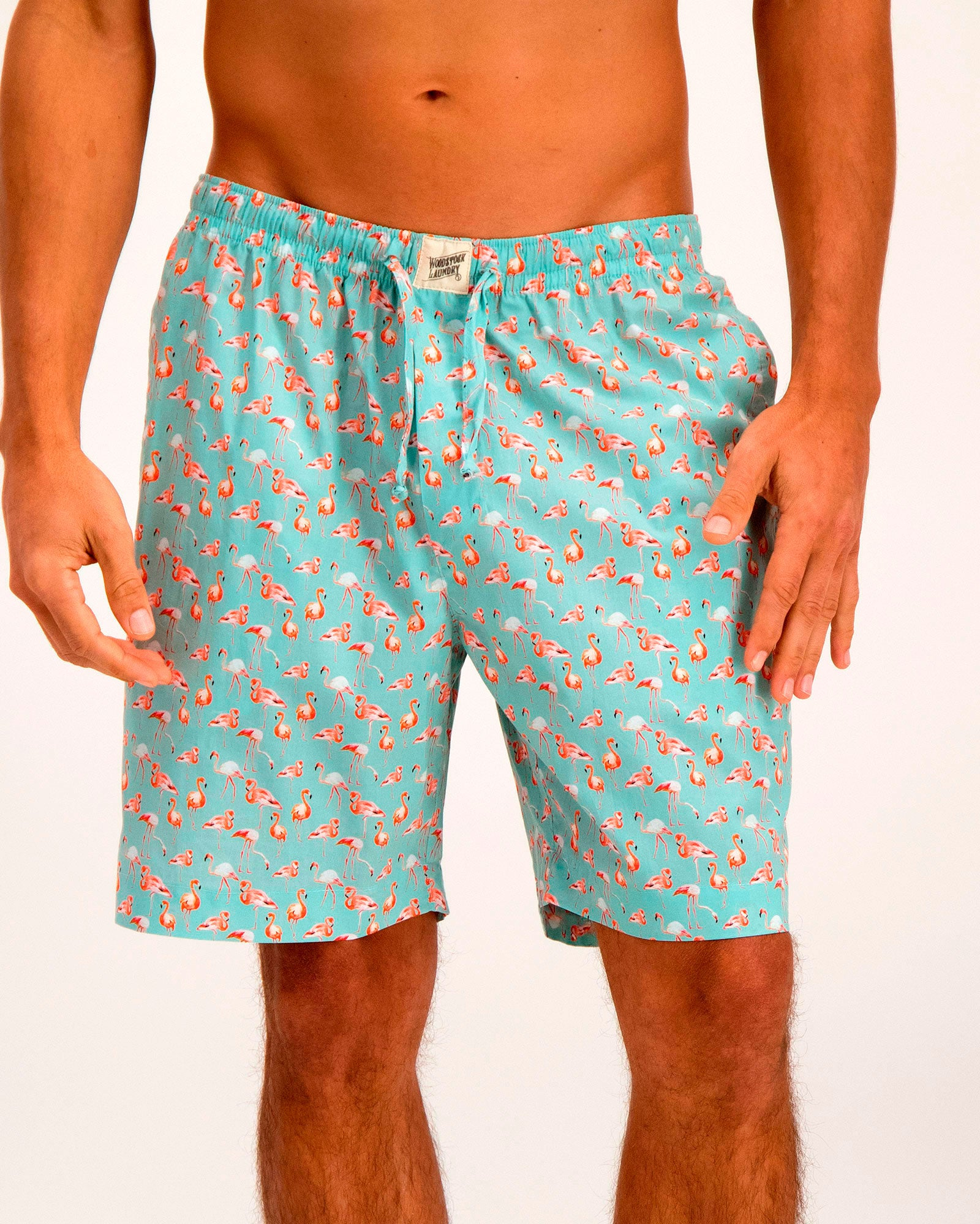 Mens Lounge Shorts Flamenco-Flamingo Blue