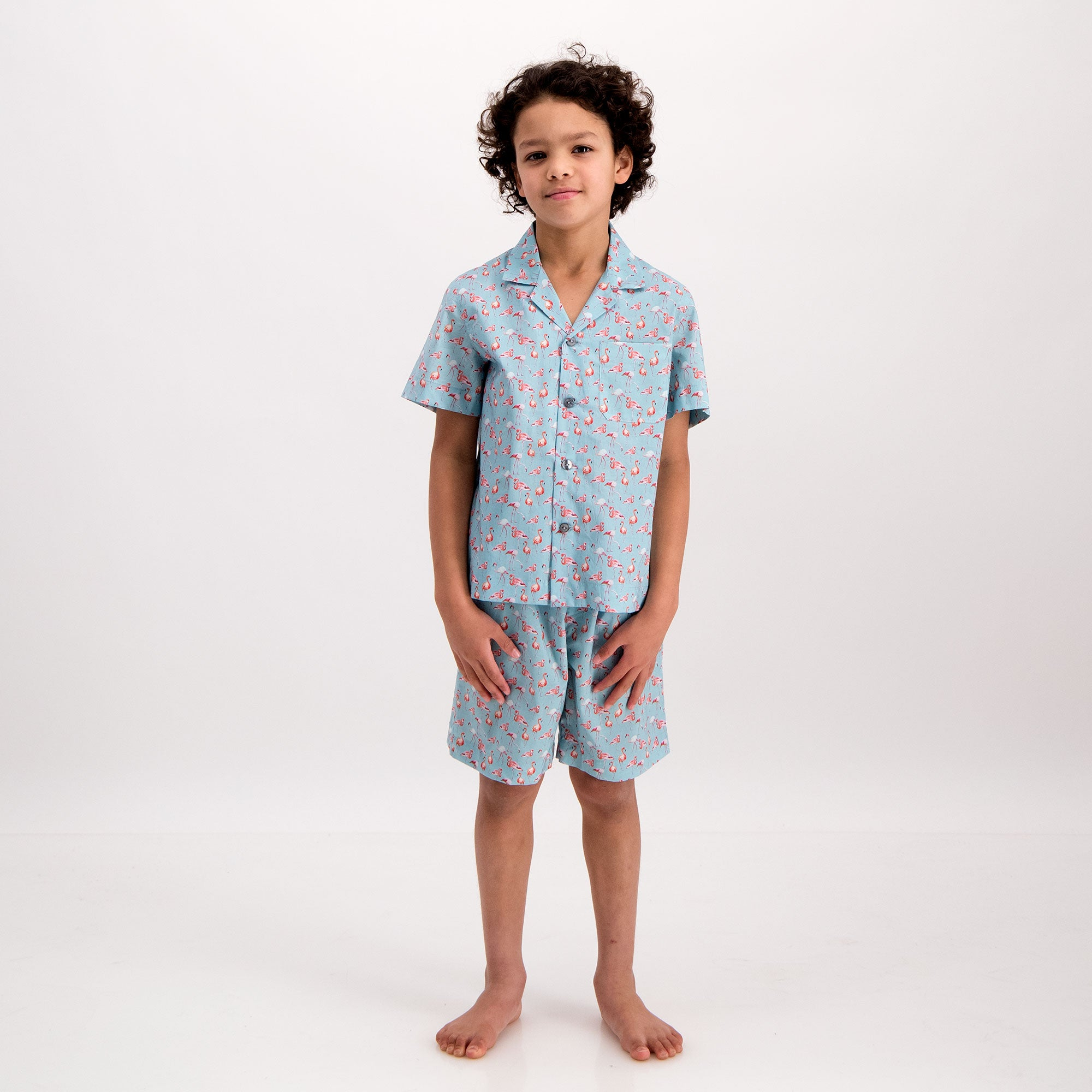 Boys Short Pyjamas Flamenco-Flamingo Blue - Woodstock Laundry