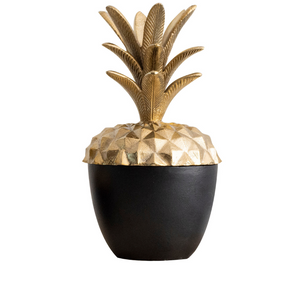 Pineapple box - large
