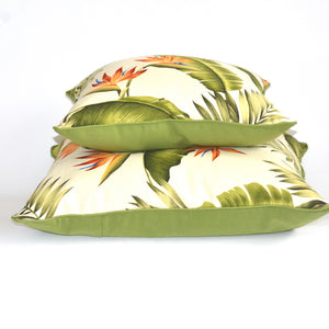 Hawaiian Lani cushion