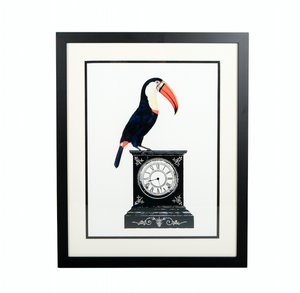 toucan and clock framed print