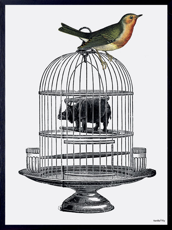 Framed and mounted print of birdcage