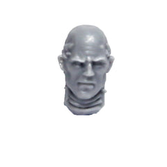 Warhammer 40K Forgeworld Imperial Fists Sigismund Head