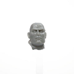 Warhammer 40K Forgeworld Sons of Horus The Warmaster Head Bare