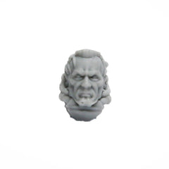 Warhammer 40K Legio Custodes Shield Captain Head Bare