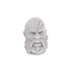 Forgeworld Warhammer Age Of Sigmar Stormcast Eternals Head Upgrade Set 1 Bare E