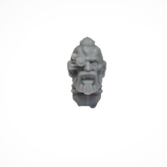 Warhammer 40K Marines Forgeworld Space Wolves Grey Slayers Upgrade Head Bare F
