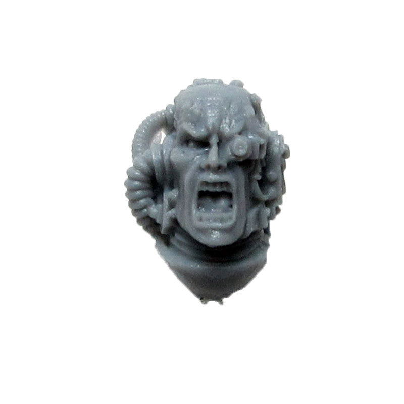 Warhammer 40k Forgeworld Raven Guard Captain Korvydae Head Bits