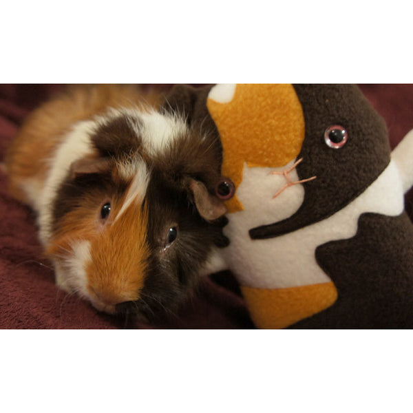 Custom Guinea Pig stuffed animal - Plush clone of your piggy - Plush Stuffed Animal - Flat Bonnie - 5
