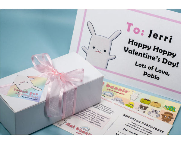 Bunny poop gift set - Kawaii bunny poop gift for bunny lover - Plush Stuffed Animal Poop - Flat Bonnie - 3
