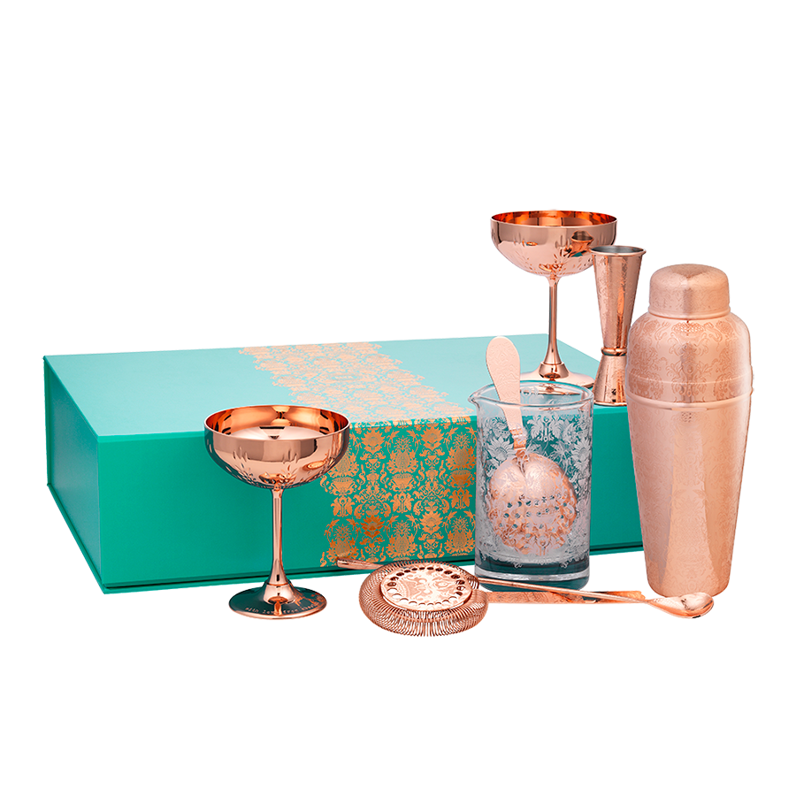 Deluxe Martini Gift Set with 3-piece Shaker