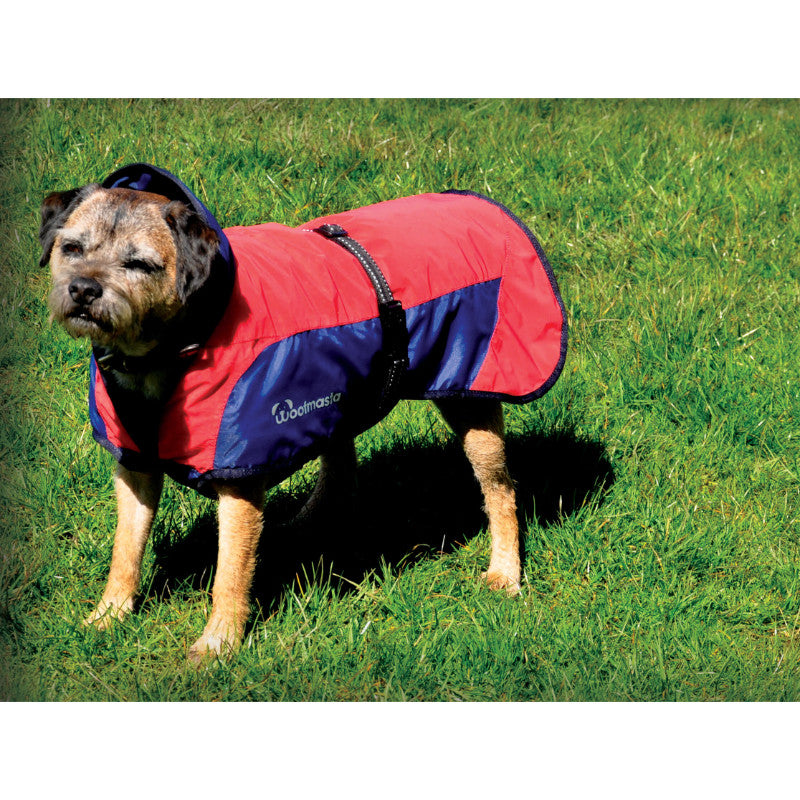 Masta Secret Flash Dog Coat