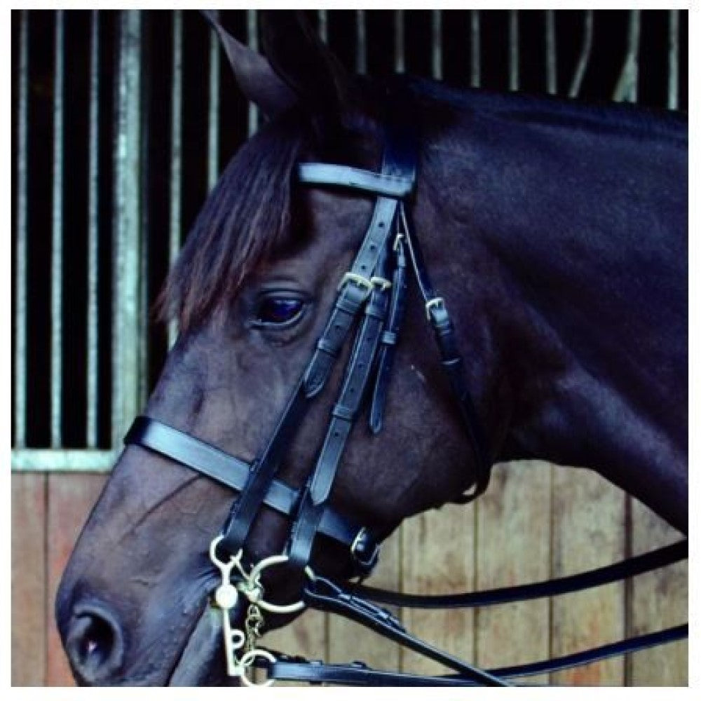 Celtic Double Bridle