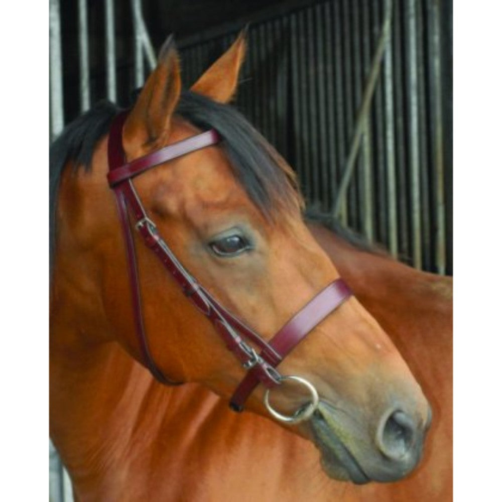 Celtic Hunting Bridle