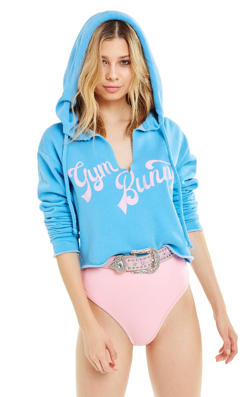 Wildfox Gym Bunny Ray Hoodie Sweater