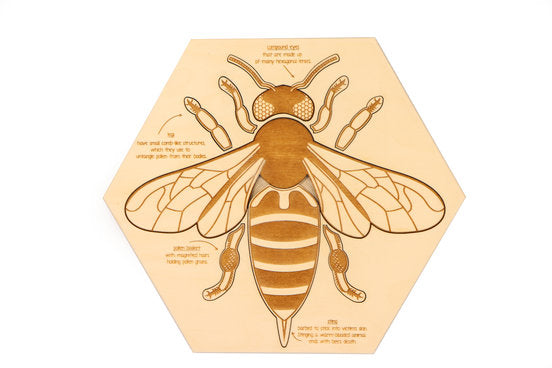 Stuka Puka - Busy Bee Wooden Puzzle - Wooden World