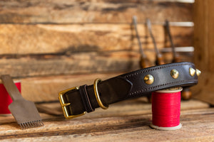 Handmade English Bridle Leather Studded and Padded Dog Collar