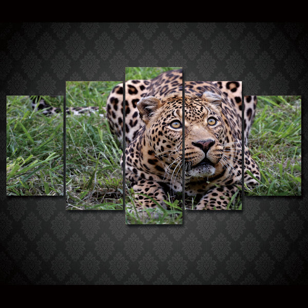 HD Printed afrika leopard Painting Canvas Print room decor print poster picture canvas Free shipping/ny-2049