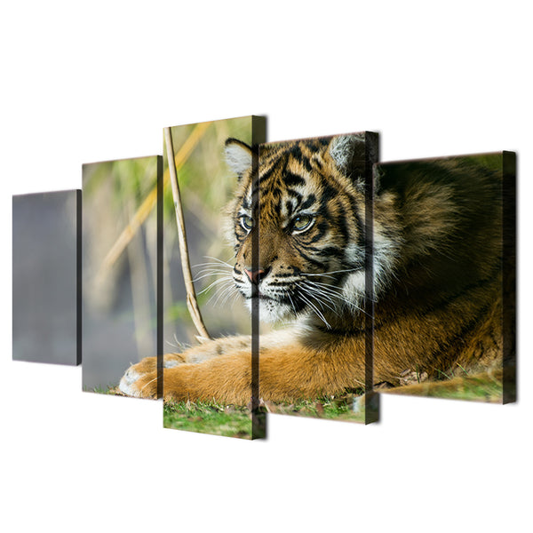 HD Printed Animals Tigers  Painting Canvas Print room decor print poster picture canvas Free shipping/ny-4011