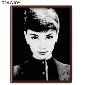 Frameless Wall Art DIY Oil Painting By Numbers DIY Canvas Oil Painting Movie Poster 40*50cm -Audrey Hepburn G004
