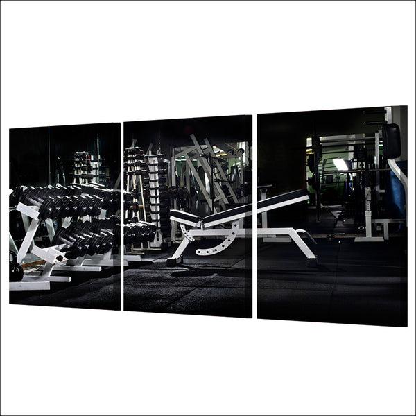HD Printed 3 Piece Canvas Art Fitness Equipment Painting Wall Pictures for Living Room Decorative Frame Free Shipping NY-6939D
