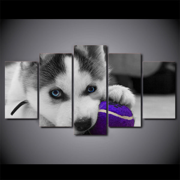HD Printed 5 Piece Canvas Art Blue Eyes Husky Painting Dog Ball Play Poster Wall Pictures for Living Room Free Shipping NY-6964A