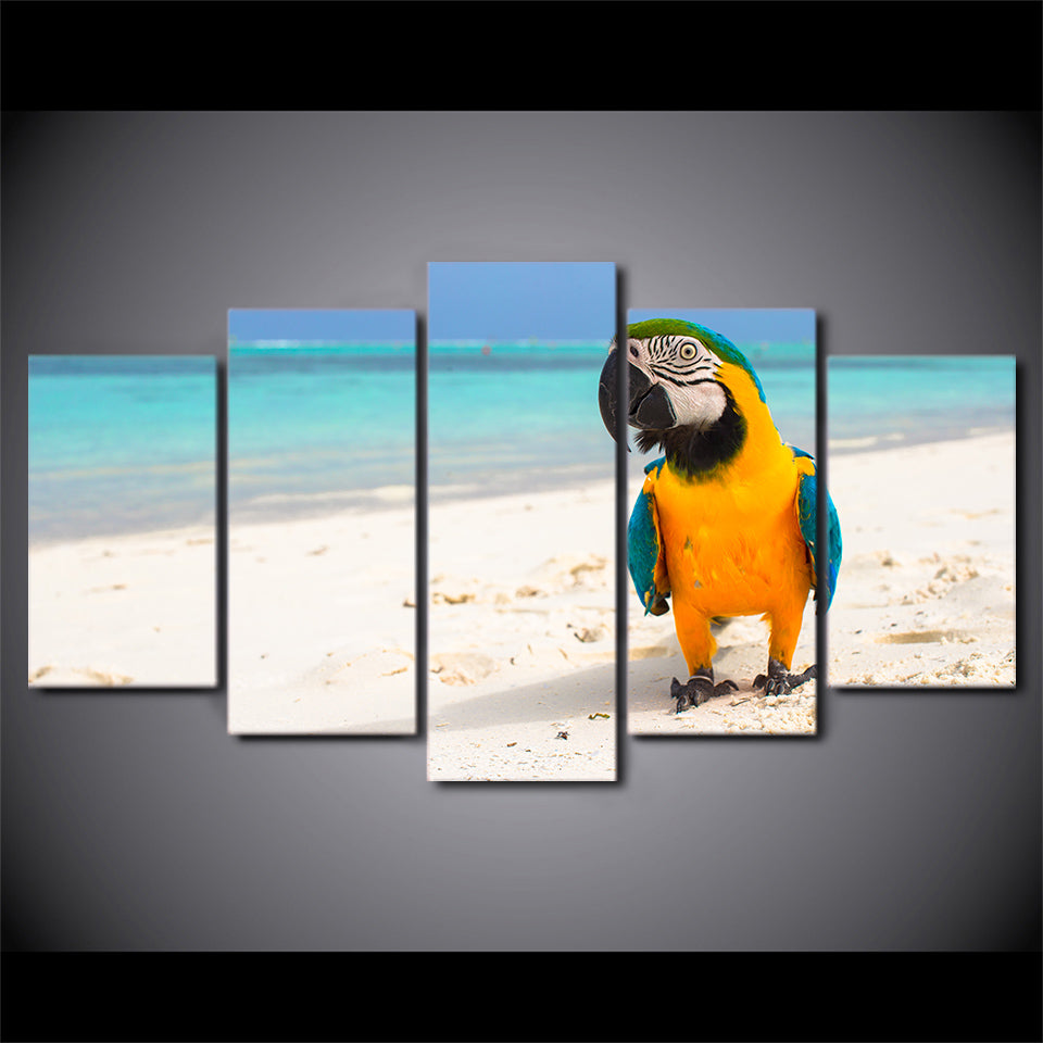 HD Printed 5 Piece Canvas Art Resting Bird Painting Beach Color Feather Wall Pictures for Living Room Free Shipping CU-1944B