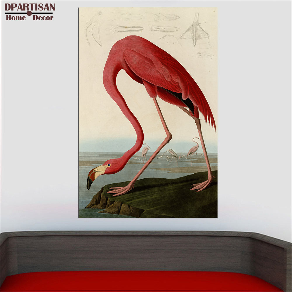 American Flamingo by John James Audubon  PRINT  Original HUGE POSTER FOR WALL DECOR PRINT ON CANVAS JJA259