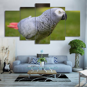 HD Printed 5 Piece Canvas Art  Bird Painting Framed  Poster Wall Pictures for Living Room Home Decoration Free Shipping CU-2073A