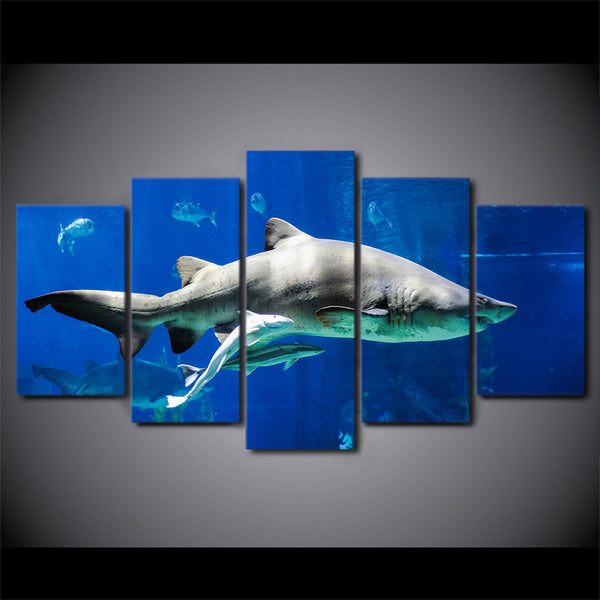 HD Printed 5 Piece Canvas Art White Shark Painting Blue Ocean Wall Pictures Decor Framed Modular Painting Free Shipping CU-2268B