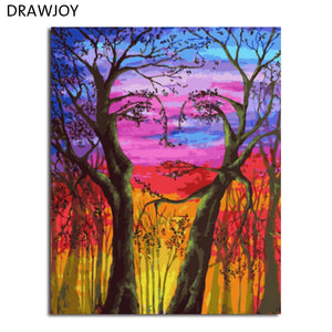 DRAWJOY Framed Wall Paint Pictures Painting & Calligraphy DIY Coloring By Numbers on Canvas Home Decor GX5527 40*50cm
