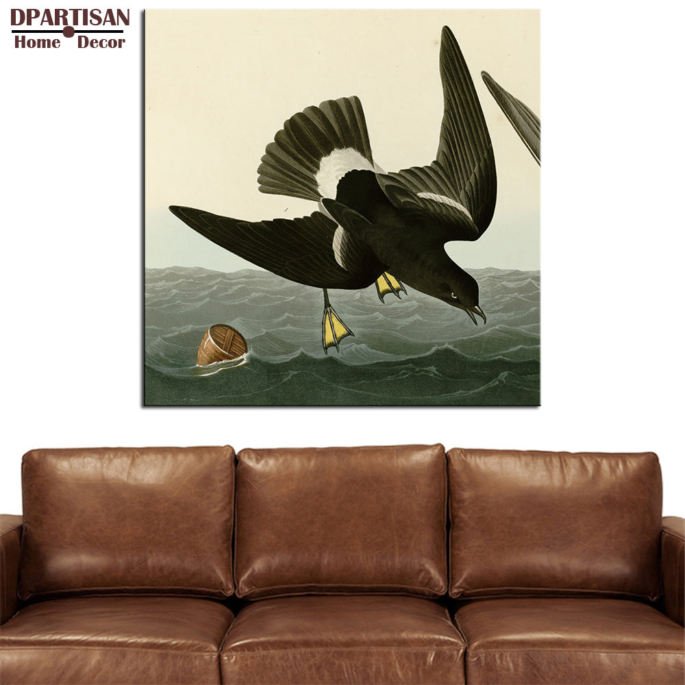 DPARTISAN  John James Audubon  One birds looking eat in the seaGiclee wall Art Abstract Canvas Prints No frame wall painting
