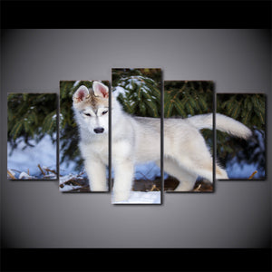 HD Printed 5 Piece Canvas Art White Wolf in Snow Forest Painting Modular Wall Pictures for Living Room Free Shipping CU-2369B