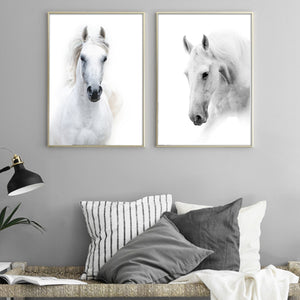 New White Horse Canvas Painting Animal Poster and Print Nordic Wall Art Pictures for Office Living Room Home Decoration Unframed