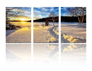 BANMU 3 Panel Snow Tree Sunshine Sunlight Sun Bule Sky Oil Painting Originality Wall Art Modern Canvas Decor Decoration Gallery