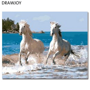 DRAWJOY Framed DIY Painting By Numbers Of Horse Painting & Calligraphy Home Decor For Living Room GX8863 40*50cm