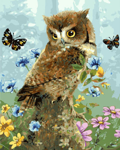 DRAWJOY Framed Oil Paint DIY Painting By Numbers Coloring By Numbers Animal Owl and Butterfly Home Decoration 40*50cm