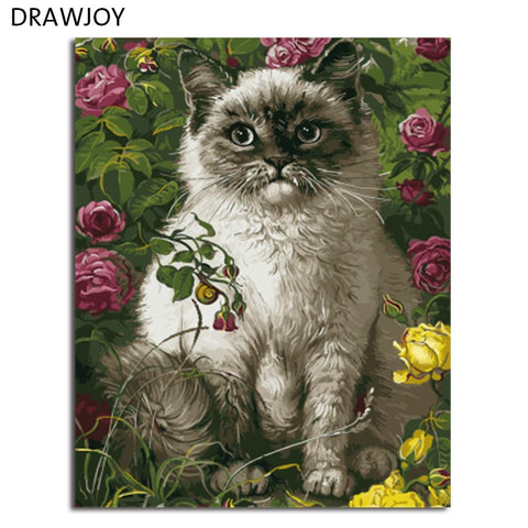 DRAWJOY Framed Picture Painting & Calligraphy DIY Painting By Numbers Coloring By Numbers Home Decor For Living Room