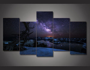 HD Printed Snowy night sky aurora Painting on canvas room decoration print poster picture Free shipping/ny-2775