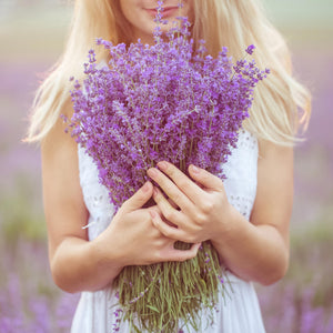 Ingredient of the Week: Lavender Oil