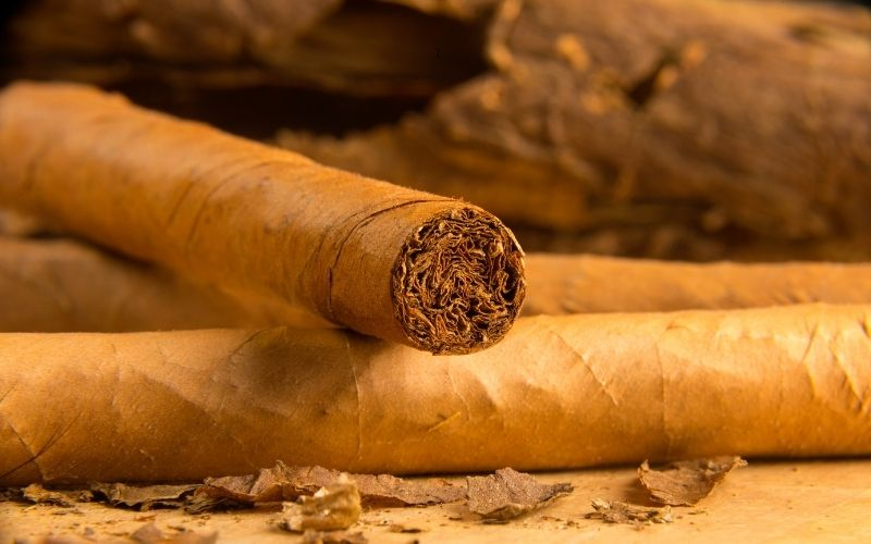 Cigars all rolled up