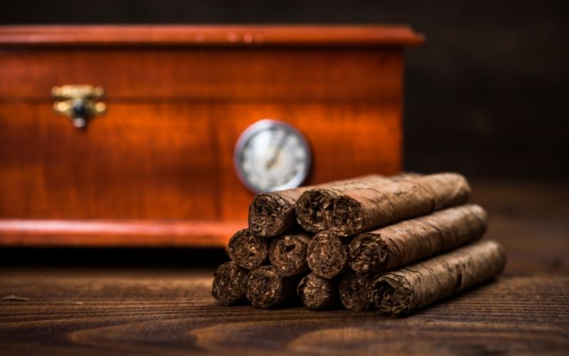 Cuban Cigars with Humidor in Background