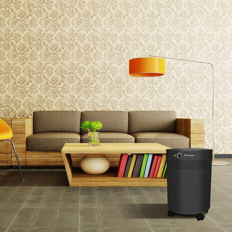 V600 Air Purifier for VOCs & Chemicals by Airpura