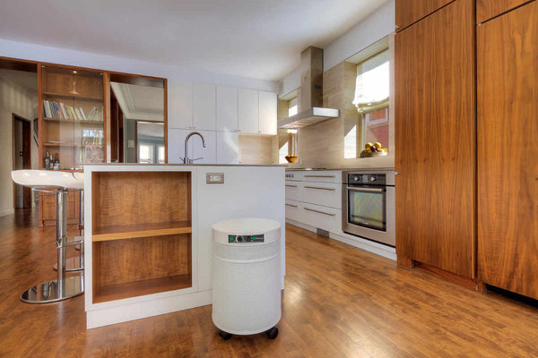 UV600 Air Purifier for Bacteria & Germs by Airpura