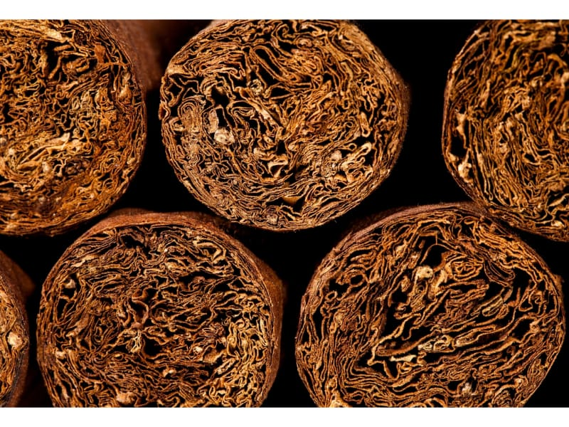 Tobacco in cigars