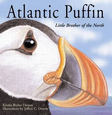 Atlantic Puffin. Little Brother of the North