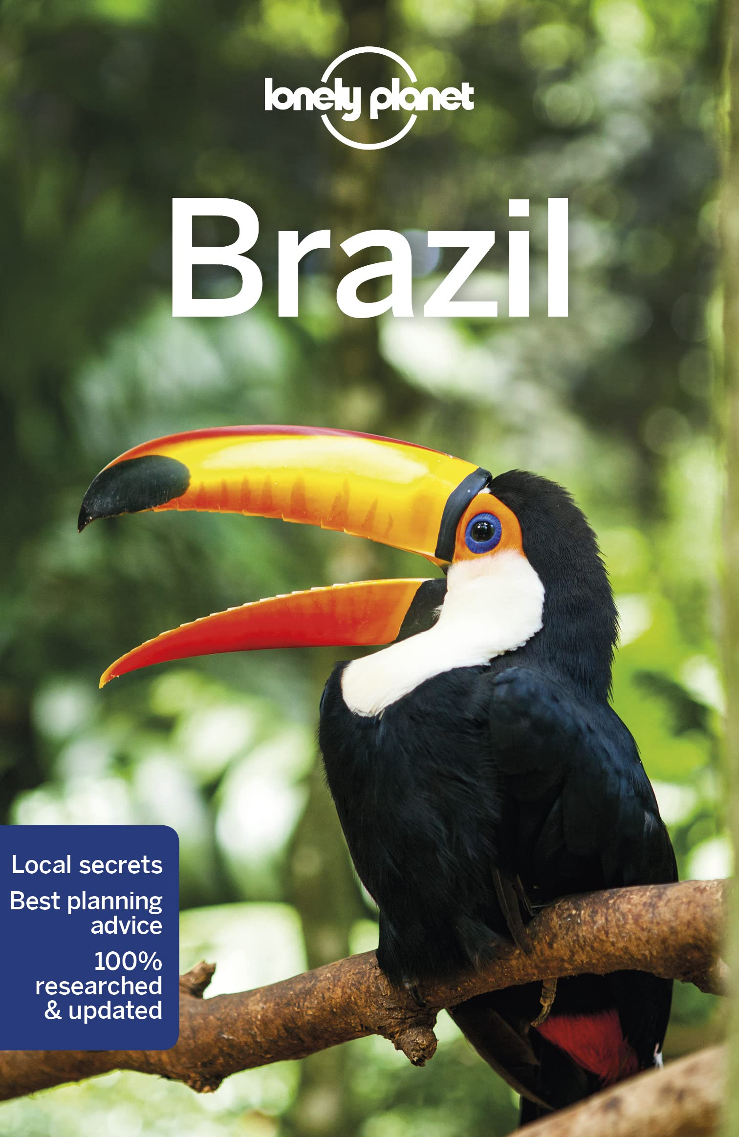 Brazil Lonely Planet 11e