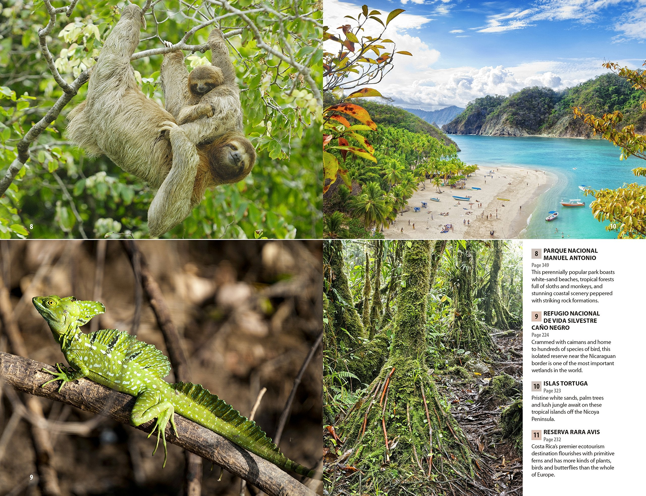 Costa Rica Rough Guide 8e