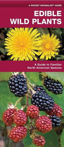 Edible Wild Plants:  A Pocket Naturalist Guide
